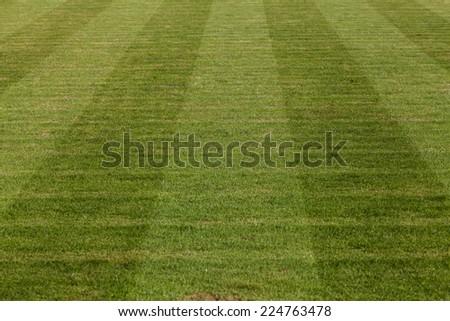 Closeup image of natural green grass soccer field - stock photo