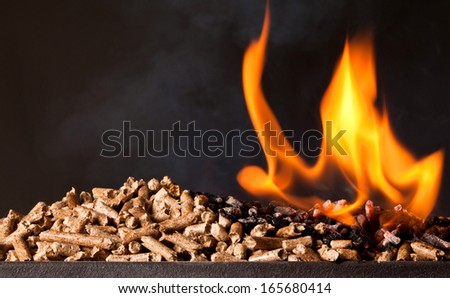 closeup image of wood pellets - stock photo