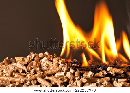 closeup image of wood pellets