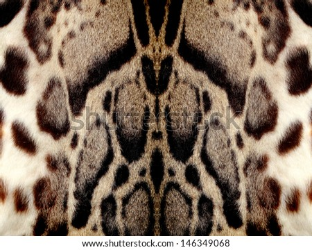 Closeup leopard hair for background - stock photo