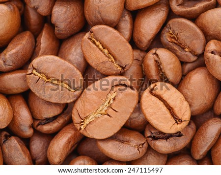 Closeup macro coffee beans background