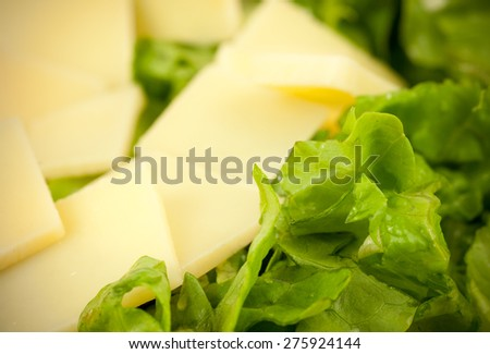 Closeup macro image of fresh healthy nutritious salad made of lettuce and hard Emmental cheese thin slices, symbolizing good eating practices and habits without losing pleasures of tasty food - stock photo