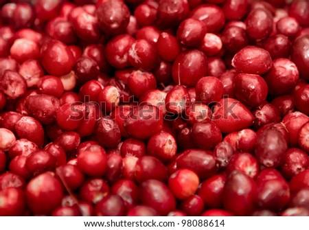 closeup macro of red berries in a big pile - stock photo
