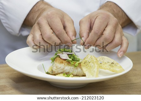 Closeup midsection of a chef garnishing food - stock photo