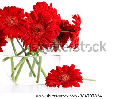 Closeup od red gerber daisies in glass vase - stock photo