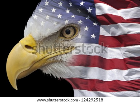 closeup of a bald eagle combined with US flag - stock photo