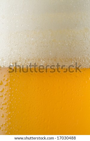 Closeup of a beer in a chilled mug with foam and condensation on the surface of the glass