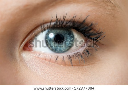 Closeup of a blue eye