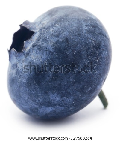 Closeup of a fresh blueberry over white background