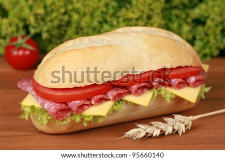 Closeup of a fresh sandwich with salami, cheese and lettuce - stock photo