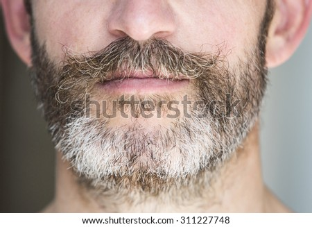 closeup of a full beard