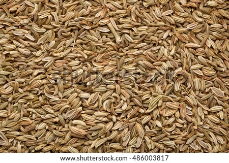 Closeup of a lot of fennel seeds
