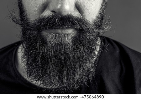 Closeup of a man beard and mustache over gray background.Perfect beard