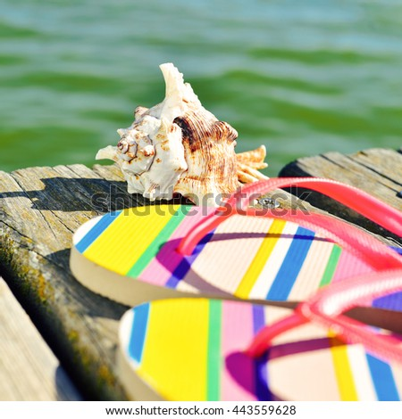 closeup of a pair of colorful flip-flops and a conch on a weathered wooden pier over the sea - stock photo
