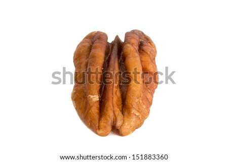 Closeup of a pecan peanut, isolated on white background - stock photo