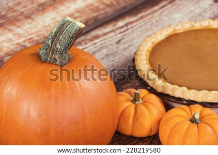 Closeup of a pie pumpkin. Mini pumpkins and a pie on the background on wooden table. - stock photo