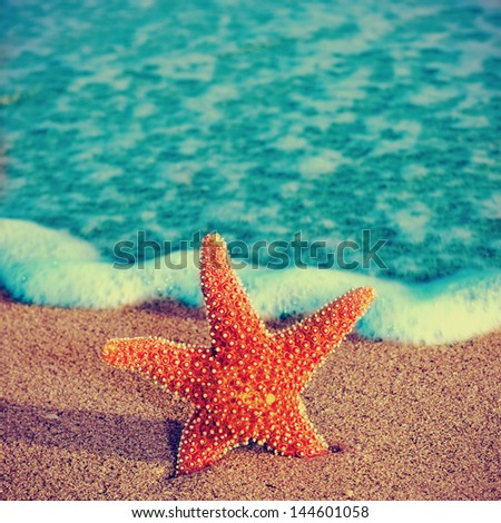 closeup of a starfish on the sand of a beach, with a retro effect - stock photo