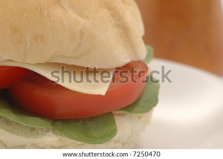 Closeup of a tomato and cheese sandwich.