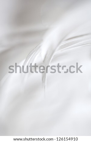 Closeup of a white feathers with a shallow DOF.  Copy space. - stock photo