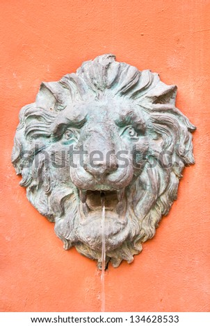 Closeup of antique lion spitting water on the wall