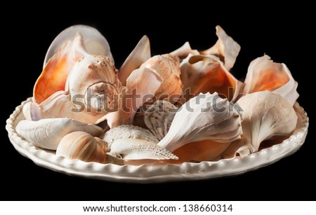 Closeup of assorted large seashells arranged on a rustic white glazed dish. Isolated on black. - stock photo
