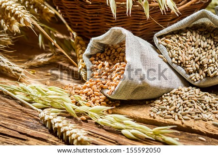 Closeup of bags with cereal grains - stock photo