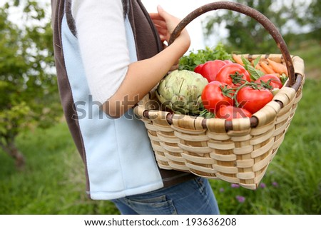 Closeup of basket full of fresh vegetables - stock photo
