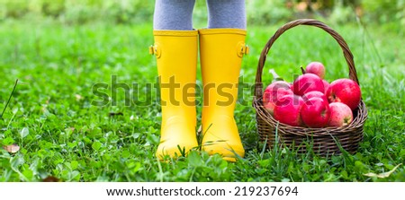Closeup of basket with red apples and rubber boots on little girl - stock photo