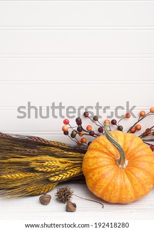 Closeup of Beautiful Mini Pumpkin with Wheat, acorns and berry arrangement on White Wood Background with room or space for copy, text.  Vertical  - stock photo