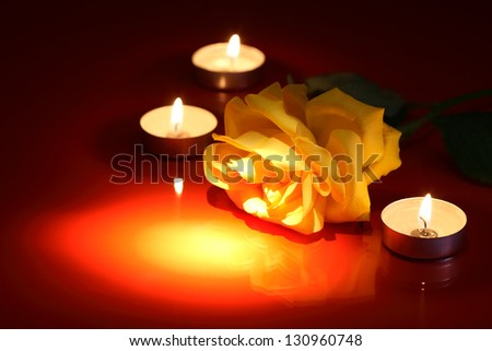 Closeup of beautiful yellow rose near lighting candles on red background - stock photo