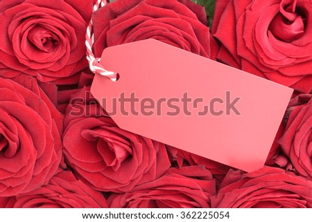 Closeup of blank tag with red roses  - stock photo