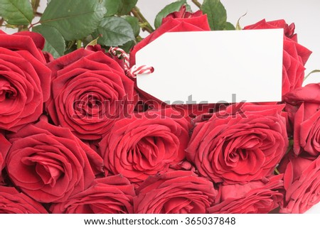 Closeup of blank white tag with bunch of red roses  - stock photo