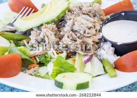 Closeup of Blue Crab Salad - stock photo