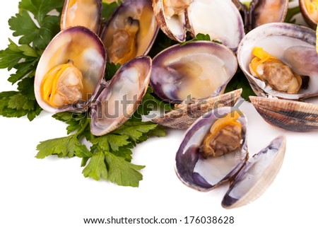 Closeup of boiled clams with parsley.