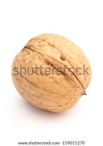 Closeup of brown and fresh walnut isolated on white background - stock photo