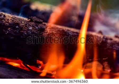 Closeup of burning camping bonfire