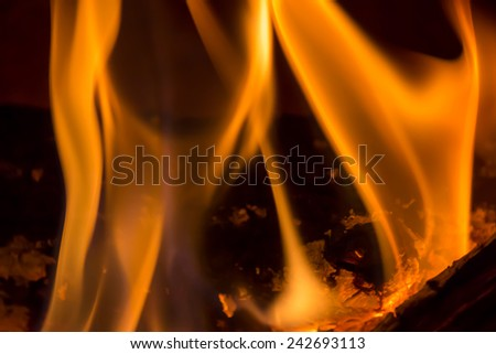 closeup of burning wood in a fireplace