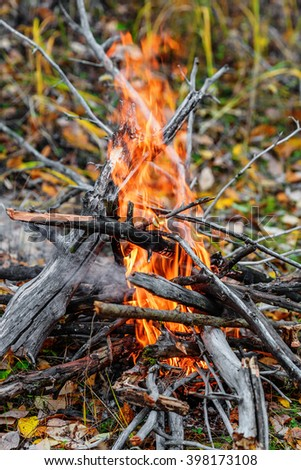 Closeup of campfire flame and firewood on the ground - stock photo
