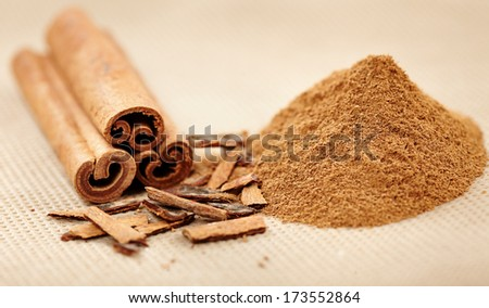 Closeup of cinnamon sticks and powder with selective focus - stock photo