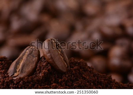 Closeup of coffee beans at roasted coffee heap. Coffee bean on macro ground coffee background. Arabic roasting coffee - ingredient of hot beverage - stock photo