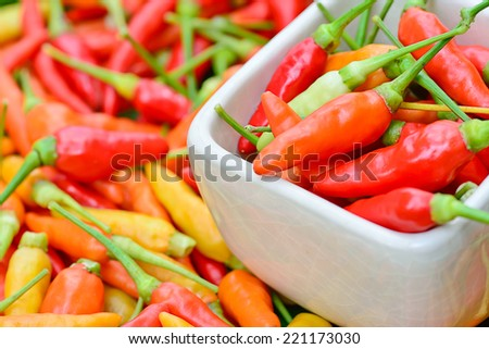 closeup of  colorful fresh  peppers ; selective focus  with blur   background - stock photo