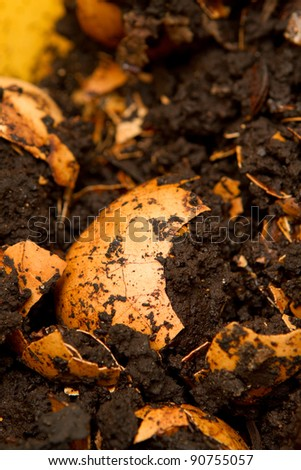 Closeup of compost - stock photo