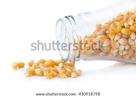 Closeup of corn grains, Dried corn used for making popcorn, Corn seeds isolated on white background. - stock photo