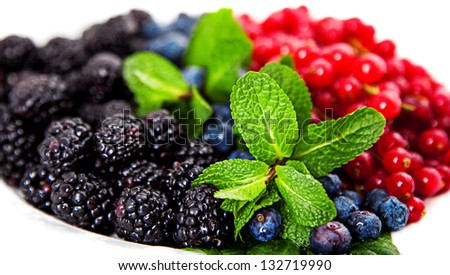 Closeup of cranberries, blueberries, mulberries and mint served on white plate - stock photo