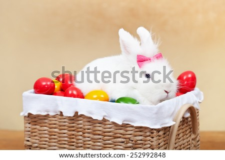Closeup of cute easter bunny sitting in basket with colorful eggs-shallow depth of field - stock photo