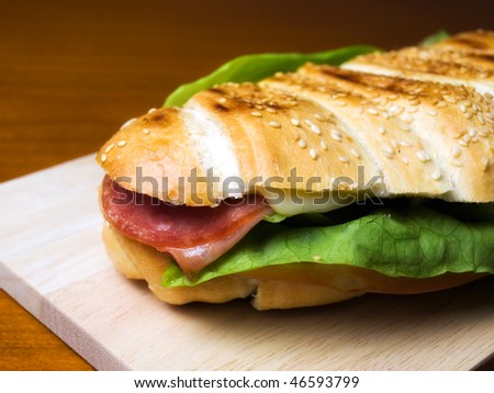 Closeup of delicious warm sandwich on the table... - stock photo