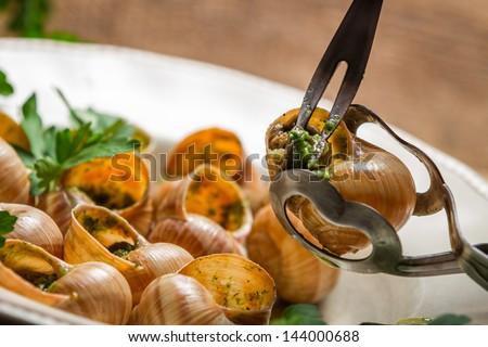 Closeup of eating the fried snails with garlic butter - stock photo