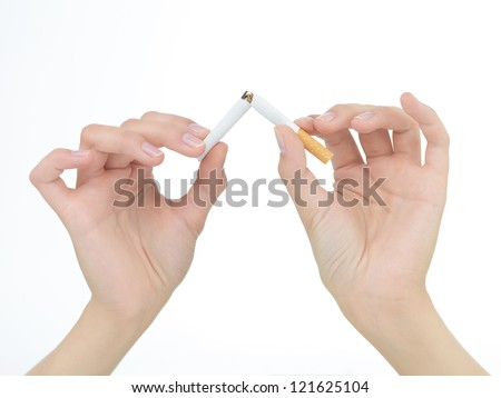 closeup of female  hands breaking a cigarette in two isolated on white - stock photo