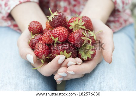Closeup of female hands holding freshly picked strawberries - stock photo