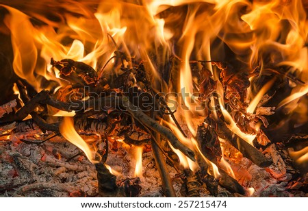 Closeup of firewood Burning fire in fireplace, horizontal shot - stock photo